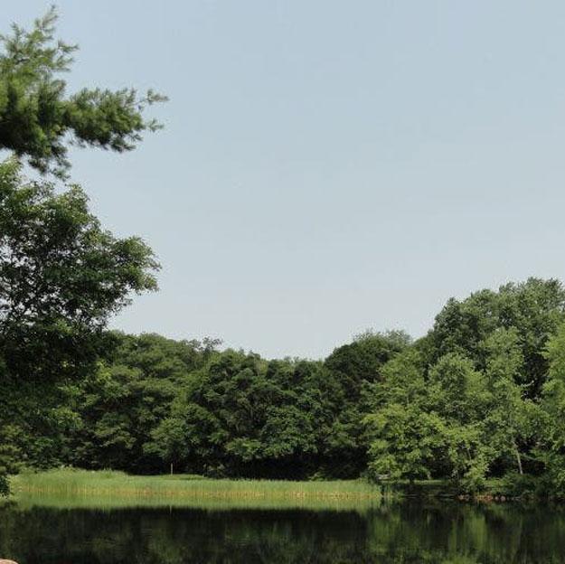 Menotomy Rocks Park